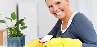 Cleaning services, window cleaning, carpet cleaning, house cleaning, apartment cleaning